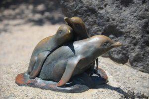 花崗岩島上的小藍企鵝