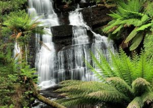 大奧特威國家公園瀑布