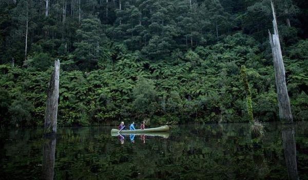 Great Otway National Park大奧特威國家公園